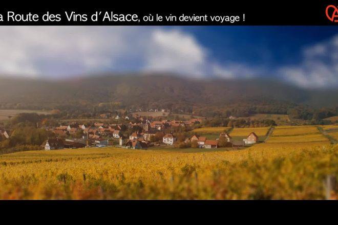 Route des Vins d'Alsace, Colmar, France