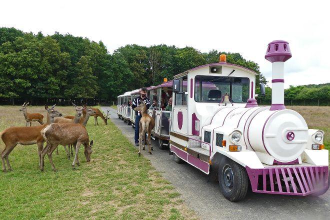 Safari Train -Reserve de Beaumarchais, Autreche, France
