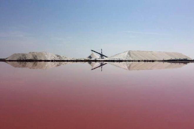 Salin d'Aigues-Mortes, Aigues-Mortes, France