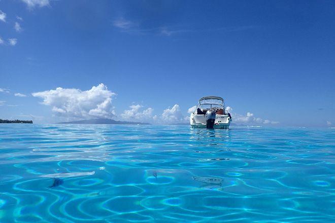 H2O Bora Bora Snorkeling Tours, Vaitape, French Polynesia