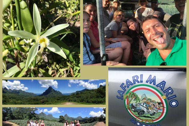 Safari Mario Moorea, Maharepa, French Polynesia