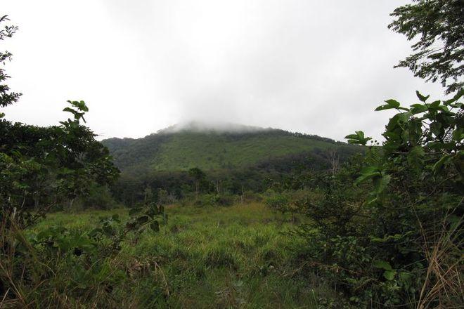 Reserve de la Lope, Lope Wildlife Reserve, Gabon