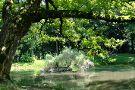 Zugdidi Botanical Garden