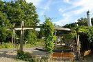 Botanischer Garten Chemnitz