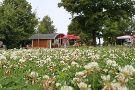 Minigolfpark am Stausee Bautzen