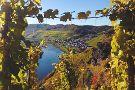 Weingut Dr. Pauly-Bergweiler