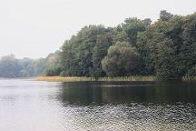 Grunewald Forest, Berlin, Germany