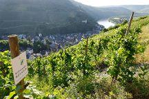 Weingut Richard Boecking, Traben-Trarbach, Germany