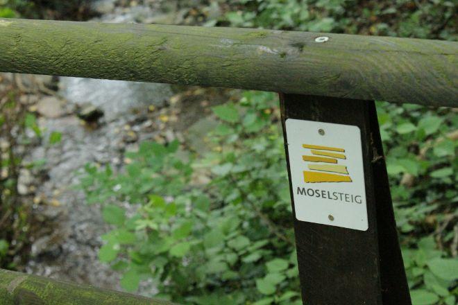 Moselsteig, Bernkastel-Kues, Germany
