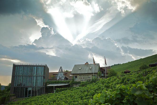 Weingut am Stein, Ludwig Knoll, Wurzburg, Germany