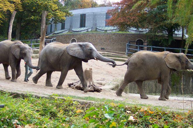 Zoo Wuppertal, Wuppertal, Germany