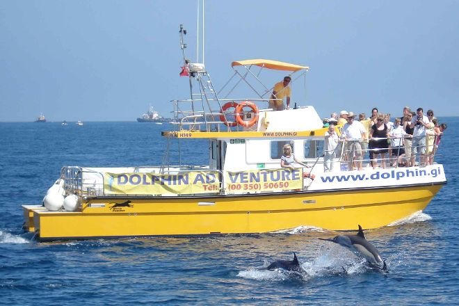 Dolphin Adventure, Gibraltar