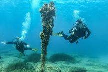 Athens Divers Club