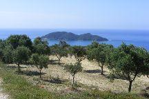 Dafni Beach, Zakynthos, Greece