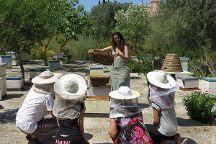 Dias Beekeeping, Svoronata, Greece