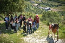 Finikia Horseriding, Finikia, Greece