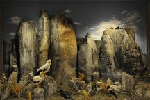 Natural History Museum of Meteora and Mushroom Museum, Kalambaka, Greece