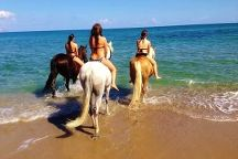Zoraida's Horse Riding, Paralia Kourna, Greece