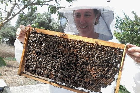 Dias Beekeeping, Svoronata, Greece