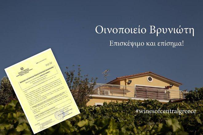 Vriniotis Winery, Edipsos, Greece