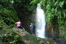 Tropical Adventures