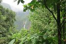 Carbet Falls (Les Chutes du Carbet)