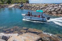 Les Baillantes Tortues, Pointe-Noire, Guadeloupe