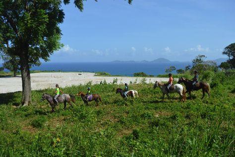 Les Ecuries de la Coulisse, Trois Rivieres, Guadeloupe