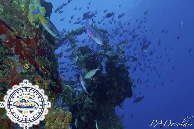 Atlantis Formation, Bouillante, Guadeloupe