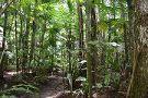 Parque Nacional Las Victorias