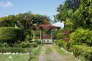 Guyana Botanical Gardens