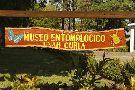 Museo Entomologico CURLA - UNAH