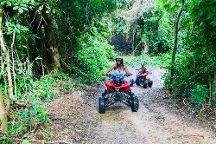 ATV Buggy Jungle Tours
