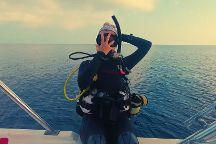 Bay Islands College of Diving