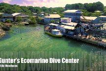 Gunter's Ecomarine