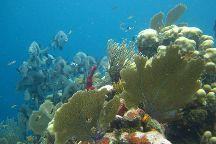Underwater Vision Dive Center