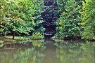 Agostyan Arboretum