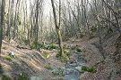 Dera Creek