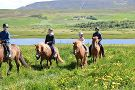 Tvistur Horse Rental