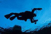 Diving Island