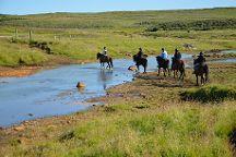 Hestheimar Riding Tours