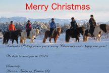 Icelandic Riding