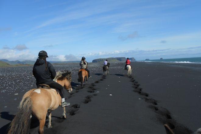 Dyrholaey Riding tours, Vik, Iceland
