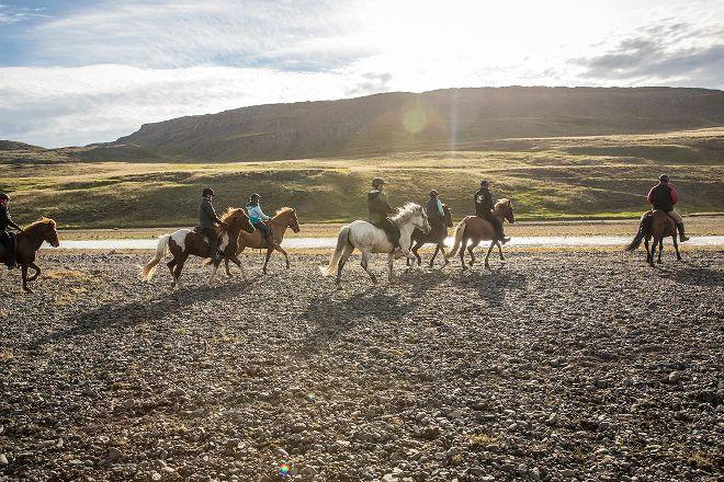 Hestasport - Riding Tours, Varmahlid, Iceland