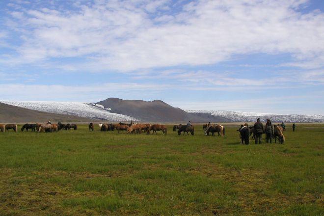 Ishestar Horse Riding Tours, Reykjavik, Iceland