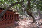 Karnataka Chitrakala Parishat