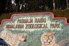 Padmaja Naidu Himalayan Zoological Park