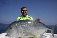 Andaman Angler