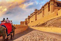 Anil India Jaipur