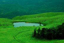 Christopher Holidays, Munnar, India